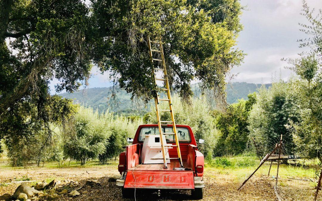 Owl Box Construction & Installation – Upper Ojai Valley